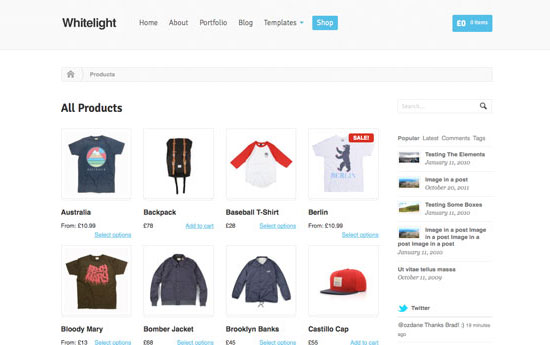 Best WooCommerce WordPress Themes
